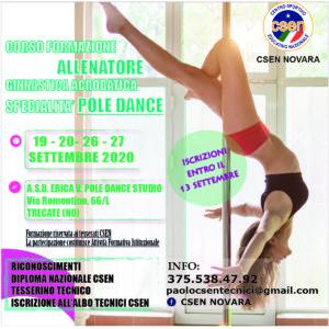 pole dance13